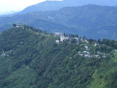 Constantia Rifle range,near Makaibari Tea Estate,Darjeeling
