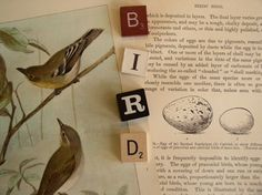 Vintage Game Letters BIRD via Etsy.