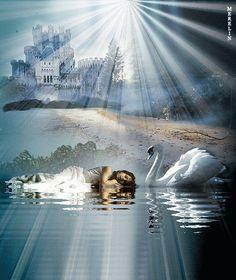 stelladelmiocielo — relaxbeach1:   Dormivi… Con accanto la mia anima…...