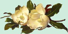 Diplomas da Atividade Poética sobre Imagem - Período de 30 de Outubro a 13 de Novembro de 2015 - Atividade Poética Sobre imagem - Casa dos Poetas e das Poesias