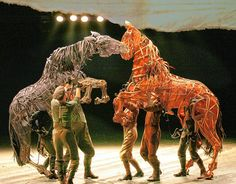 war horse - Google Search