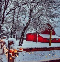 Red Barn And Christmas Lights Snow