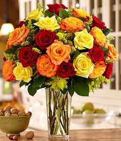 Two Dozen Autumn Roses from ProFlowers