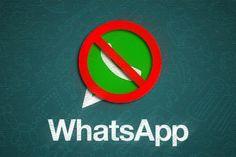 Viu essa? Prefeito proíbe secretários de participarem de grupos no WhatsApp - Blue Bus