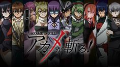 Reading the manga now and will move on to Akame ga Kiru zero! Description from hammerfallnetworks.com. I searched for this on bing.com/images