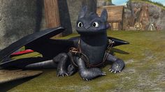 Toothless <3 Toothless And Stitch, Toothless Dragon, Hiccup And Toothless, Hiccup And Astrid, Httyd Dragons, Dreamworks Dragons, Cute Dragons, Disney And Dreamworks, Night Fury Dragon