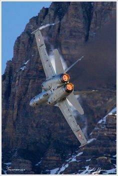 Photograph McDonnell Douglas - Boeing Hornet by Édouard Puginier on Military Jets, Military Weapons, Military Aircraft, Fighter Aircraft, Fighter Jets, Image Avion, F18 Hornet, Photo Avion, Swiss Air