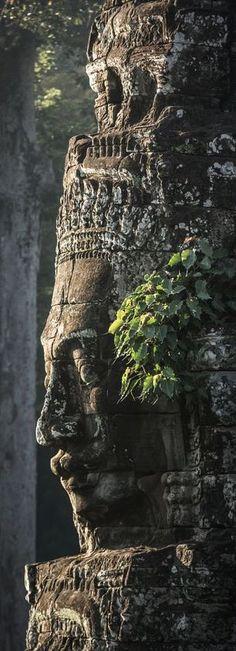 Angkor, Kambodscha. #fluffyhero9