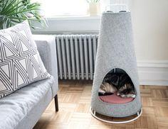 No More Shredded Sofas! | Yanko Design
