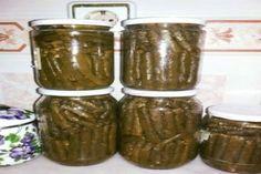 konserve kavanozunda yaprak sarması