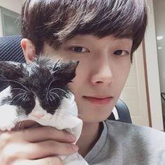 김용국 (Kim Yongguk) Taking Care Of Kittens, Kim Yongguk, Kwon Hyunbin, All About Kpop, Produce 101 Season 2, Dream Boy, Heechul, Smiles And Laughs, Taemin