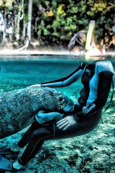Protect animals and respect the planet...  #savetheplanet #salveoplaneta