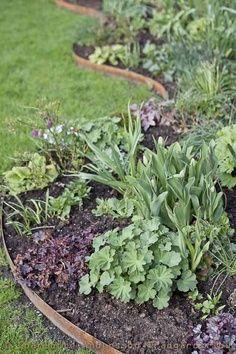 1000 Images About Edging Ideas On Pinterest Garden 400 x 300
