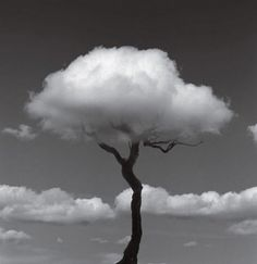 Spanish photographer Jose Maria Rodriguez Madoz, better known as Chema Madoz, has a unique perspective for black and white photography.