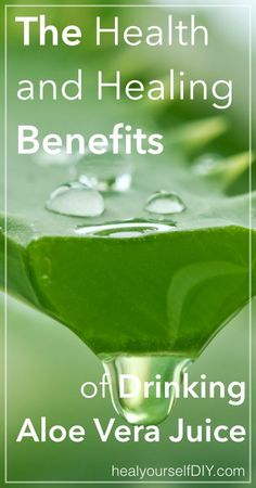The Health and Healing Benefits of Drinking Aloe Vera Juice