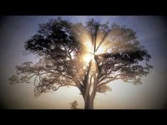 """""""Arise, My Love"""" by Newsong"""