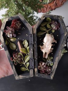 A beautiful, hand painted coffin box with metal latch. Inside are brushed silk flowers, treated quartz crystal and a real, cruelty free Gopher Skull.  Great for autumn decor, altars, or halloween accents.  - - -  Moth and Marrow believes in recycling and repurposing. Animal parts are cruelty free, Halloween Crafts For Kids, Fall Halloween, Minerals And Gemstones, Raw Gemstones, Crystals Minerals, Personal Project Ideas, Halloween Coffin, Types Of Craft, Diy Box