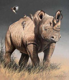 Coloring for adults - Kleuren voor volwassenen Wildlife Paintings, Wildlife Art, Animal Paintings, Animal Drawings, Rhino Animal, Rhino Art, Africa Painting, Africa Art, Scratchboard Art