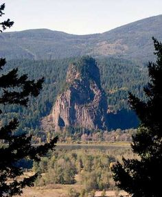 Beacon Rock earned its name when Captains Lewis and Clark camped in its shadow on their way to the Pacific Ocean in 1805. The rock is an 848-foot basalt column that formed the core of an ancient volcano.