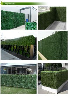 SGS UV protected artificial boxwood mat 25cmX25cm synthetic hedges fake 3 leaf foliage grass mat for garden G0602A001C-in Garden Buildings from Home Improvement on Aliexpress.com | Alibaba Group