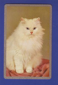 1 Single Swap Playing Card Vintage Cats 02   eBay