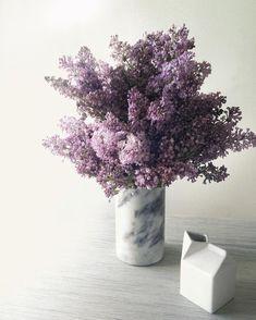 Lilacs in a marble vase | Hayden Regina