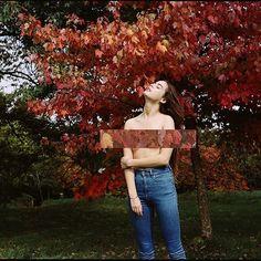 🍁Feuillue🍁 #autumn #boredlife