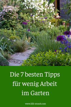 Back Gardens, Small Gardens, Garden Cottage, Home And Garden, Amazing Gardens, Beautiful Gardens, Indoor Garden, Outdoor Gardens, Decoration Chic