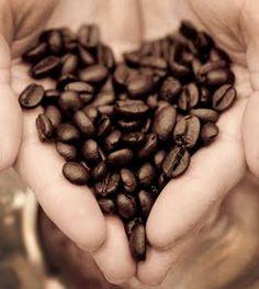 Café, café y café...  www.ganodermaentutaza.com