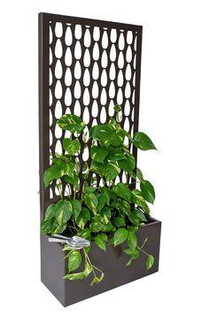 Lump Sculpture Studio specialising in Corten Steel Backyard Sheds, Backyard Patio, Metal Garden Screens, Ivy Plant Indoor, Vertical Garden Plants, Vertical Planter, Small Yard Landscaping, Room Partition Designs, Rectangular Planters