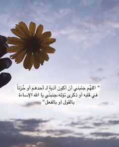Arabic Quotes, Islamic Quotes, Sweet Words, Some Quotes, Good To Know, Allah, Poster, Flowers, Recipes