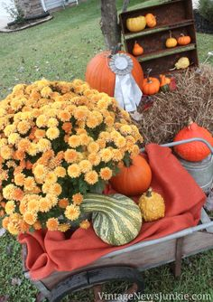 Amazing Fall decor outdoors!