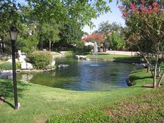 This pond is extremely well manicured which would be very high maintenance, but it is so lovely, and it goes to show you don't have to live in the country or large a large property to have a large pond ~