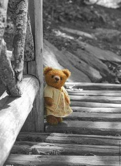 Find images and videos about b&w, bear and teddy on We Heart It - the app to get lost in what you love. Vintage Teddy Bears, My Teddy Bear, Cute Teddy Bears, Tatty Teddy, Teddy Bear Pictures, Bear Wallpaper, Boyds Bears, Love Bear, Bear Doll