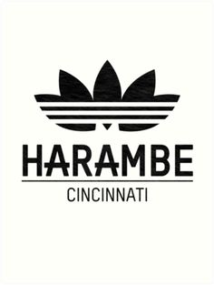 Harambe - Cincinnati