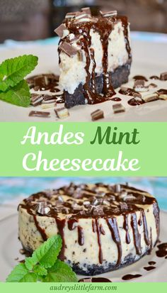 It's one of the best cheesecake recipes and is perfect for the holidays. This andes mint cheesecake is an award winning dessert! It's a perfect combination of sweet plain cheesecake, a touch of mint, and an oreo crust. Mint Desserts, Health Desserts, Delicious Desserts, Dessert Recipes, Dessert Healthy, Dessert Ideas, Easy Desserts, Cake Ideas, Oreo Dessert