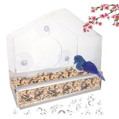 Window Bird Feeder - Clear, Removable Tray, Drain Holes & Strong Suction Cup Feeder - Easy To Clean & Refill - Enjoy Wild Birds Up Close From Inside Your House