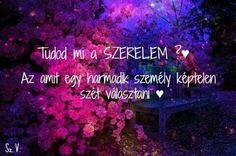 Szerelem Life Quotes, Thoughts, Love, Happy, Bunny, Pictures, Quotes About Life, Amor, Photos