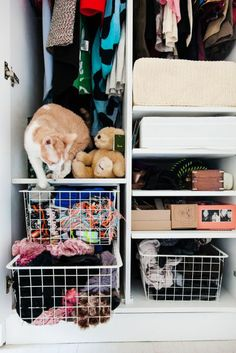 Closet Organization - Wardrobe Storage Tips #closetorganization #closet #organizing