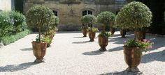 Classic French Anduze Pots// Flower Garden, Nairne
