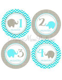 Baby ELEPHANT Monthly Onesie Stickers Teal Gray Elephants