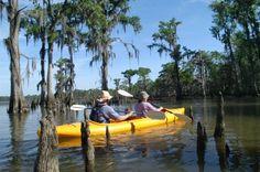 kayak tours in Louisiana
