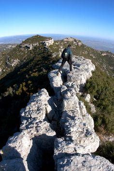 El Montsià, Alcanar, Tarragona | Patronat de Turisme Terres de l'Ebre