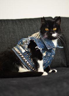 I Love my Cat Patch Biker Rocker Aufnäher Katze Tier Animal Love Miau Cats Tier