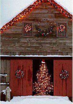It's getting to feel like Christmas!! 22 Days, Day Left, Christmas Time, Christmas Ideas, Christmas Gifts, Dutch, Christmas Presents, Dutch Language