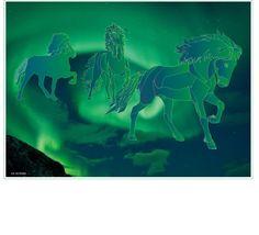 ijslandse paarden uit vuur en ijs, maar ook uit het Nooderlicht