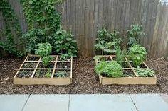 Afbeeldingsresultaat voor onderhoudsvrije groene tuin