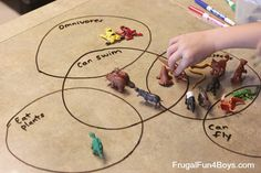 Creating Venn Diagrams