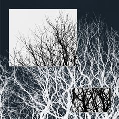 Frikkx - Series in monochrome - Image 1