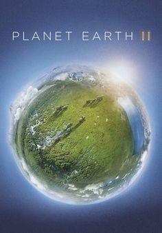 With David Attenborough. David Attenborough returns in this breathtaking documentary showcasing life on Planet Earth. David Attenborough, Blue Planet Ii, Planet Earth Ii, Earth 2, Hd Movies, Movies To Watch, Movies Online, Episodes Series, Earth